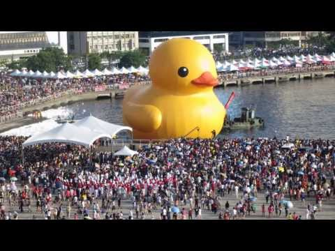 Rubber Duck Tour in Kaohsiung 2013 (HD) 高雄 黃色小鴨