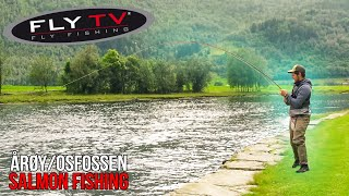 FLY TV  Salmon Fishing Tactics in Årøy and Osfossen (Neteland Brothers)