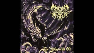 Draconis Infernum - Draconis Infernum (New Track - 2015)