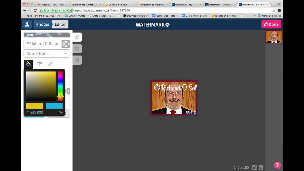 How To Use Watermark To Embed A Copyright Symbol On An Image You