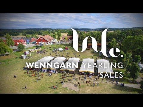 Wenngarn Yearling Sales 2017 - dag 2