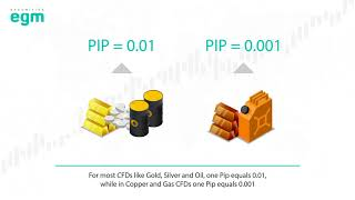 Pip Value and Profit Calculations