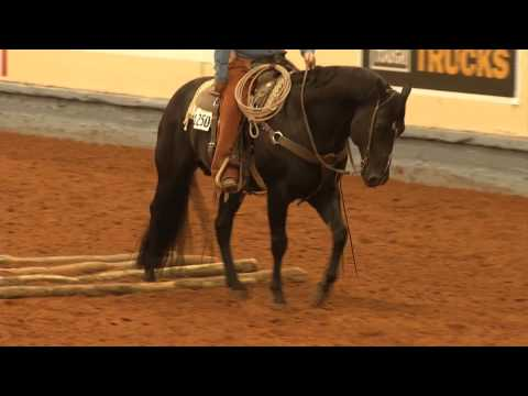AQHA Ranch Pleasure Class