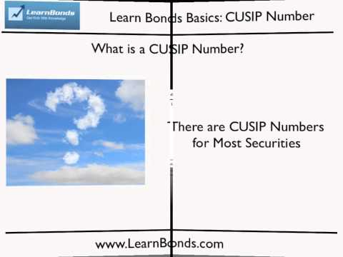 What is a CUSIP Number