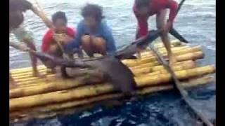 Video tablanusu sailfish strike (mancing ikan layaran di Tablanusu) download MP3, 3GP, MP4, WEBM, AVI, FLV Maret 2018