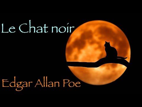 Livre audio : Le Chat noir, Edgar Allan Poe