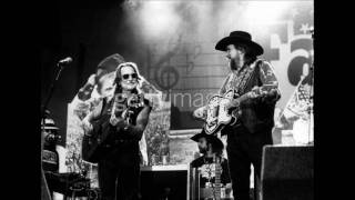 Download Willie Nelson & Waylon Jennings (Feat. Emmylou Harris) - Why Baby Why MP3 song and Music Video