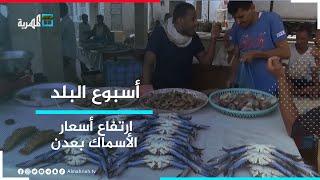 ارتفاع أسعار الأسماك يفاقم معاناة أهالي عدن