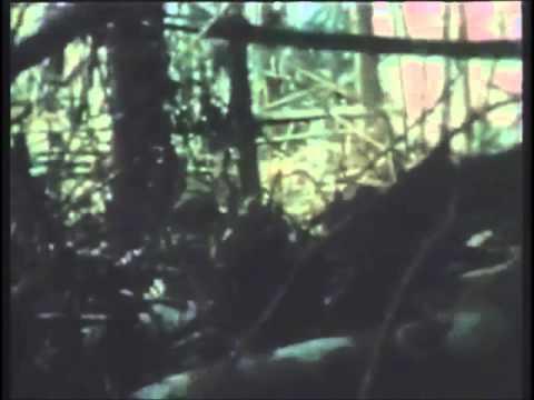 Vietnam War Canned Heat - On The Road Again.wmv