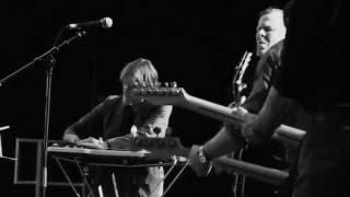 Swans live 2010-2011