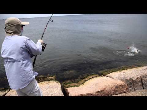 Tommy Fishing Show KingFish at Freeport 2015  Full HD  Part  1