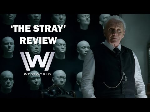 Westworld Season 1 Episode 3 Review - 'THE STRAY'