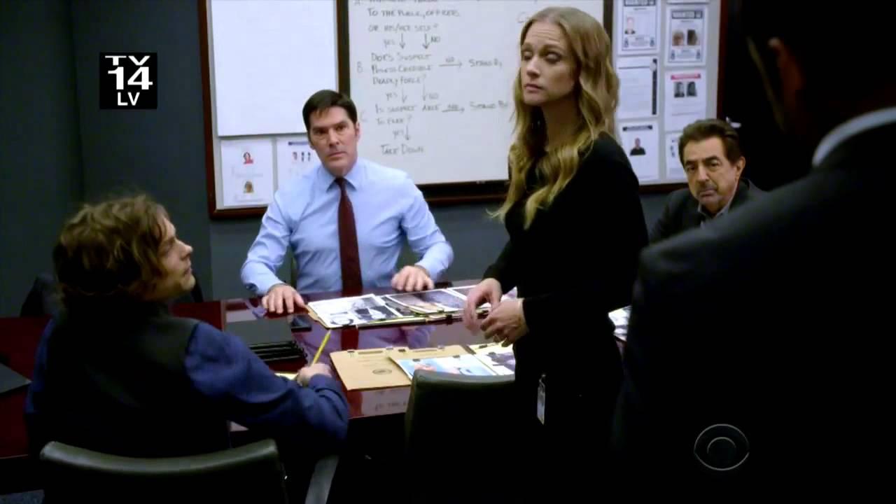 Criminal Minds - Season 11, Episode 19: Tribute - TV.com