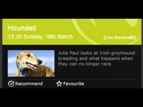 BBC Radio Ulster  'Hounded'