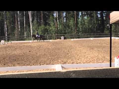Spike-Thompson Country HT Dressage