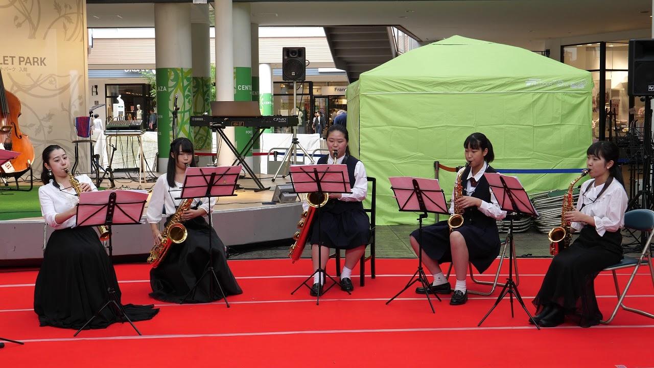 付属 大学 武蔵野 高校 音楽