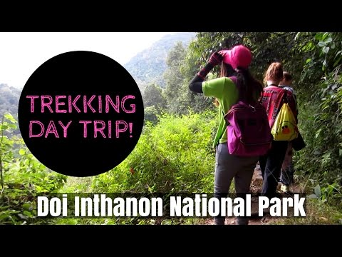 DOI INTHANON DAY TRIP・Wonderful Eco Tours・minimalist vegan t