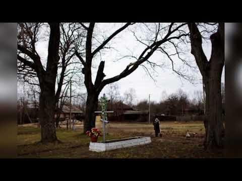 Жизнь в чернобыле сейчас - видео