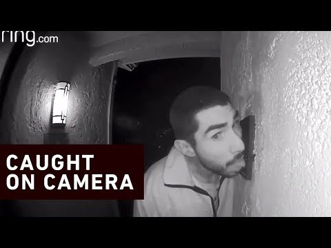 Tige and Daniel - Man Caught On Camera Licking Doorbell For 3 Hours