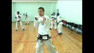 Уроки тхэквондо с Дмитрием Яковлевым (3 урок)