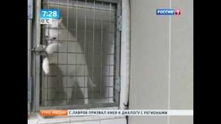 видео Французский кот-фокусник