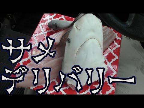 釣ったサメを友達にデリバリーしてみた。