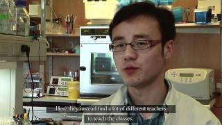 Study at Aarhus University - Yang Chuanxu
