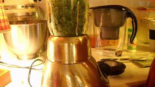 Preserving Fresh Herbs - Basil And Many Others