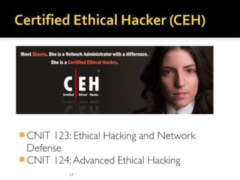 CNIT 123: Ch 1 Ethical Hacking Overview
