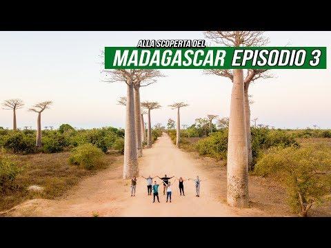 Ep3 • Viaggio Madagascar • Morondava - Bekopaka, Viale dei Baobab e Baobab Sacro