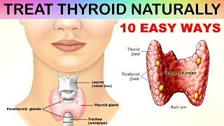 10 Foods To Cure Thyroid Naturally