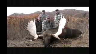 "Alaska moose hunting video "" Two nice bulls""  Alaska Range"