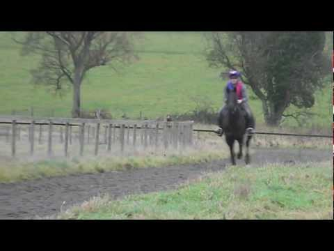 Gallops - Charly