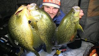 Hammering 16 inch Crappies - Uncut Angling - December 10, 2014