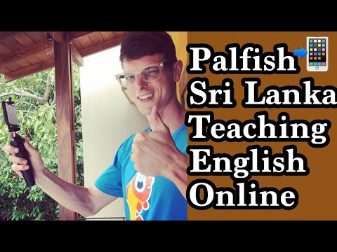 Teaching English Online With Palfish In Sri Lanka 🇱🇰  Is It Possible?