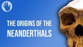 The Origins of the Neanderthals