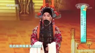 [梨园闯关我挂帅]京剧《四郎探母》选段 演唱:吴琼 宋小川| CCTV戏曲