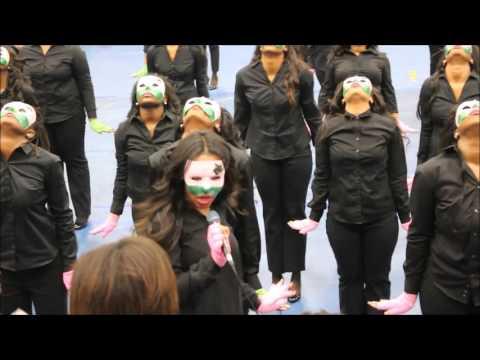 Tennessee State University Alpha Kappa Alpha Probate 2016