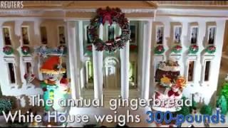 بالفيديو.. البيت الأبيض يتزين استعدادا لاحتفالات عيد الميلاد