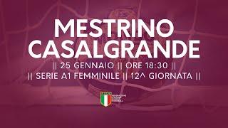 Serie A1F [12^]: Mestrino - Casalgrande 26-23
