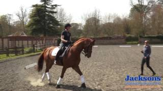 Anna Ross-Davies - How To Ride The Shoulder-in