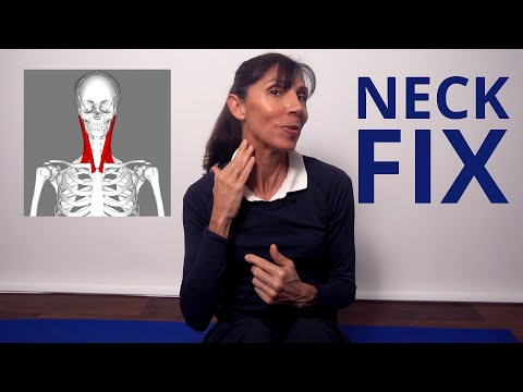 Physio Neck Strengthening Exercises For Neck Pain (Beginners)