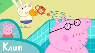 Свинка Пеппа - Плавание (клип)