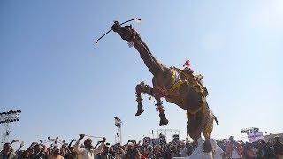 बीकानेर में ऊंट का ज़बरदस्त नाच || Amazing Camel Dance at Bikaner Camel Festival, Rajasthan