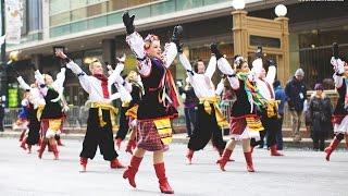 На День Подяки в центрі Чикаго українці танцювали гопак на морозі(Український танцювальний ансамбль