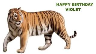 Violet  Animals & Animales - Happy Birthday