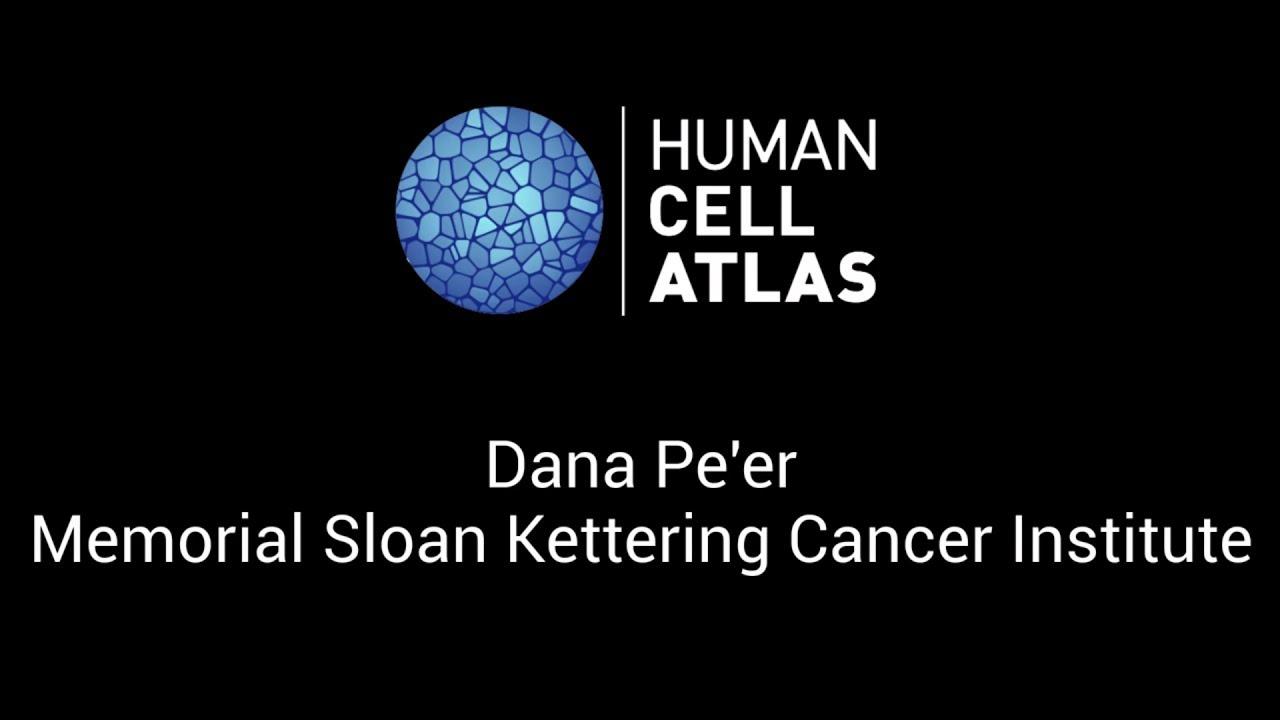 Dana Peer At The Human Cell Atlas Computational Methods Meeting