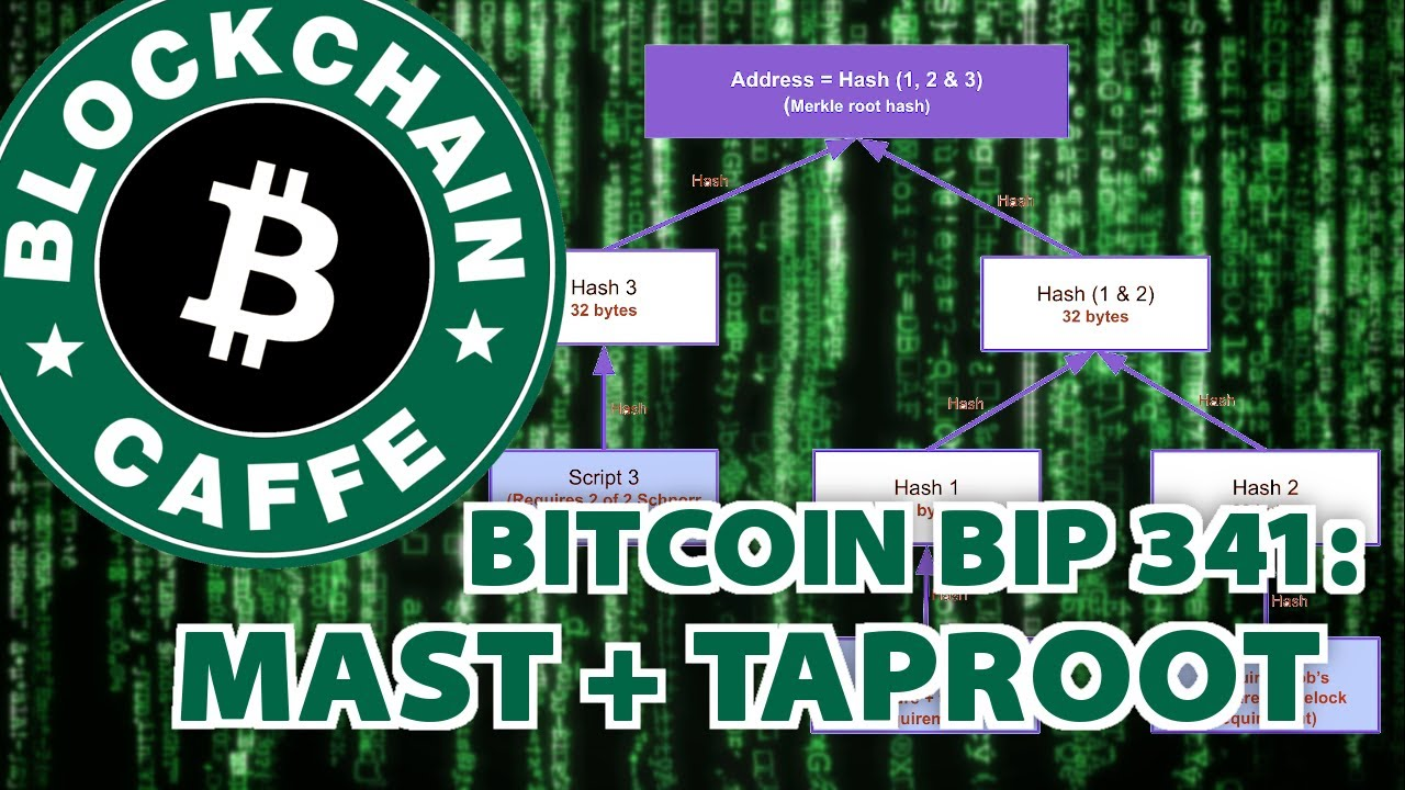 Bitcoin BIP341 : Taproot  |  Blockchain Caffe