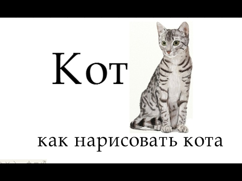 кот, как нарисовать кота поэтапно, рисунок кота, #draw, рисуем кота карандашом