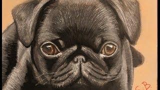 Me Drawing A Pug
